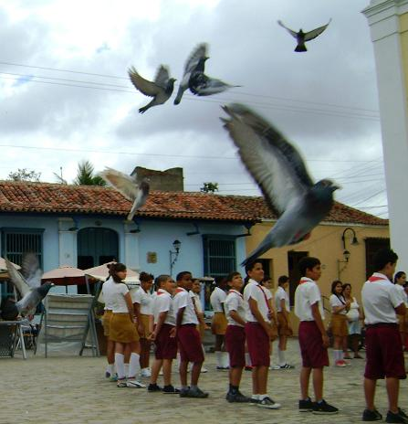 Alas de libertad. Foto Yahily Hernández