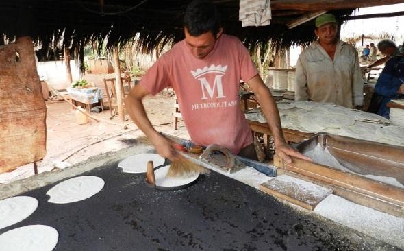En la elaboracion de casabe en Vilató