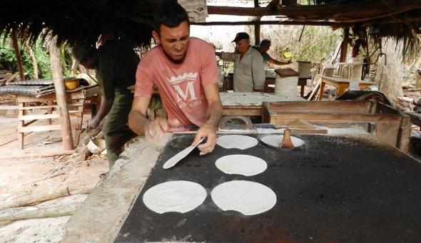 Mini-industria de casabe de Vilató Referencia Nacional.