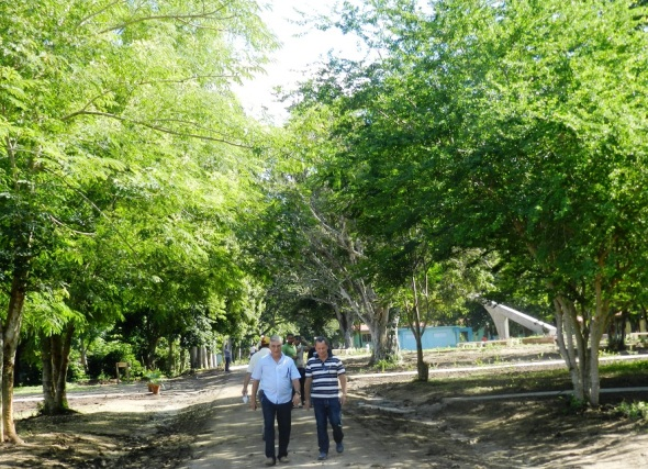 Algunas de las áreas del Parque Botánico