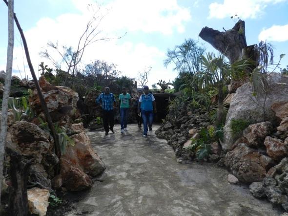 Los Paredones una obra artística creada por el hombre en el Parque Botánico Julián Acuña Galé, Camagüey, Cuba