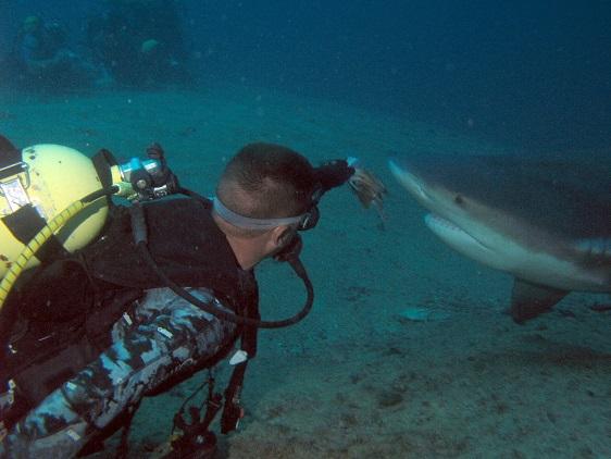 La inmersión se realiza con el paro de la marea llenante que permite una mejor visibilidad bajo los fondos marinos