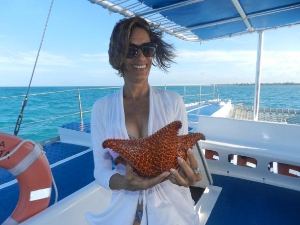 De regreso, se realiza el muy gustado show con estrellas de mar en un área donde existe una gran variedad de esta especie marina protegida