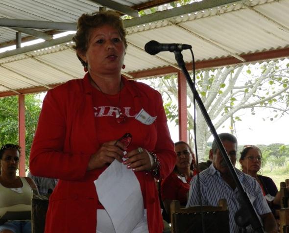 La dirección del Grupo Empresarial Logístico del Ministerio de la Agricultura en Camagüey, anunció que el año 2016 comenzó con una mejor situación en los insumos