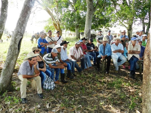 La respuesta del campesinado camagüeyano no se hace esperar ante el llamado de la direción del pais