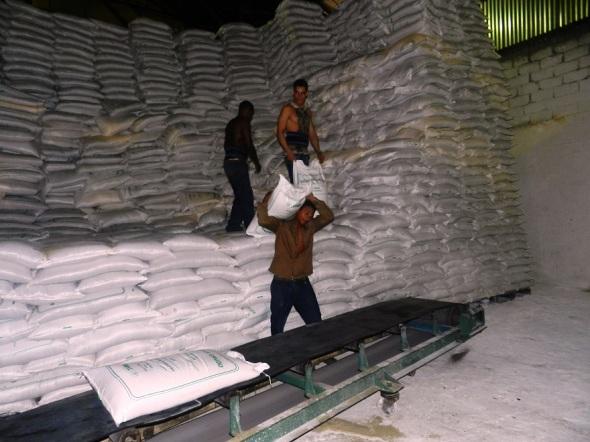 Rebasan trabajadores del central Siboney programa de producción azucarera