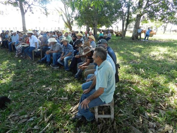 Rescatar la condición de avanzada en el acopio de leche objetivo de los campesinos de la CCS Abel Santamaria