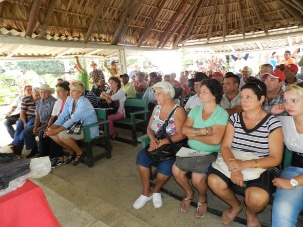 Respuesta productiva en la Cooperativa de Crédito y Servicios Fortalecida, Manuel Ascunce Domenech del municipio de Camagüey