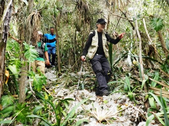 La Reserva Ecológica Limones Tuabaquey en su conjunto cubre un área de 19, 6 kilómetros cuadrados