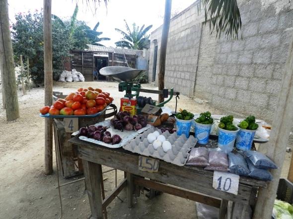 Los precios del tomate en oferta y demanda casi el doble de las unidades de acopio