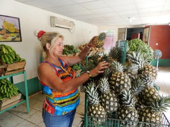 Mercado El Surco