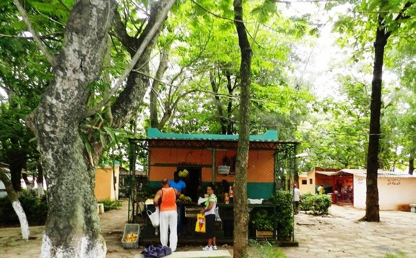 Mercado El Bosque