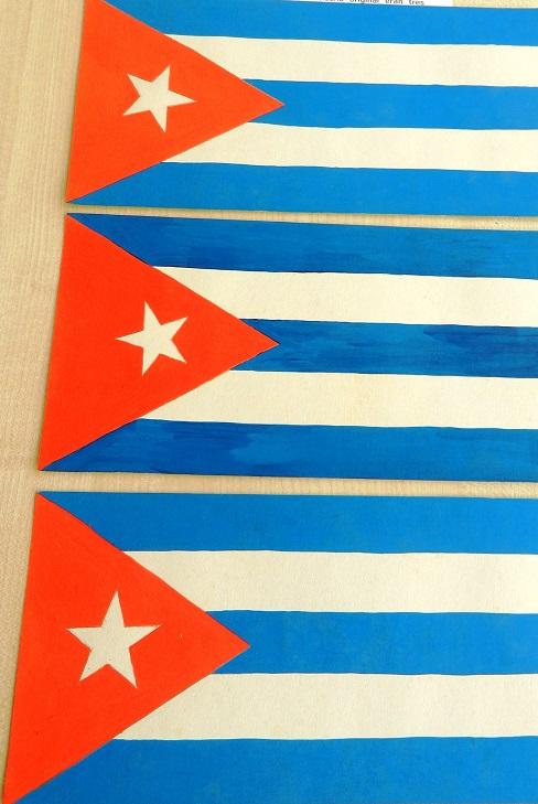 quinta-bandera-nacional-1849