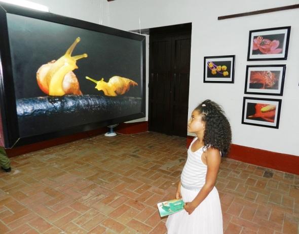 Laureado fotógrafo camagüeyano inaugura esta noche exposición personal