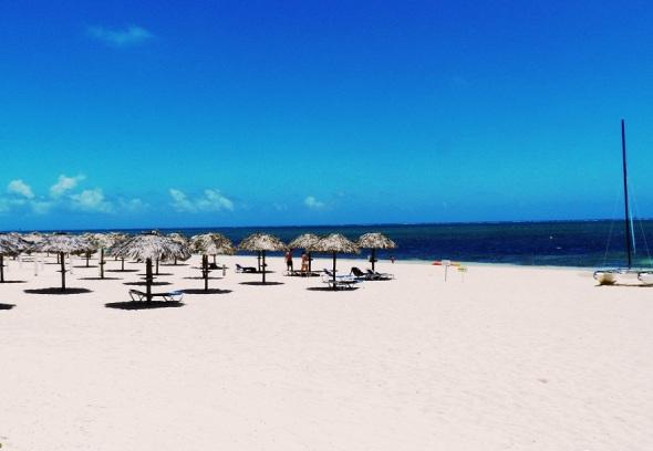 Podrá disfrutar del encanto exótico que ofrecen las playas