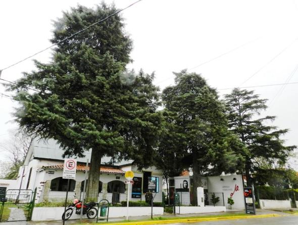 Museo Casa del Che en Alta Gracia
