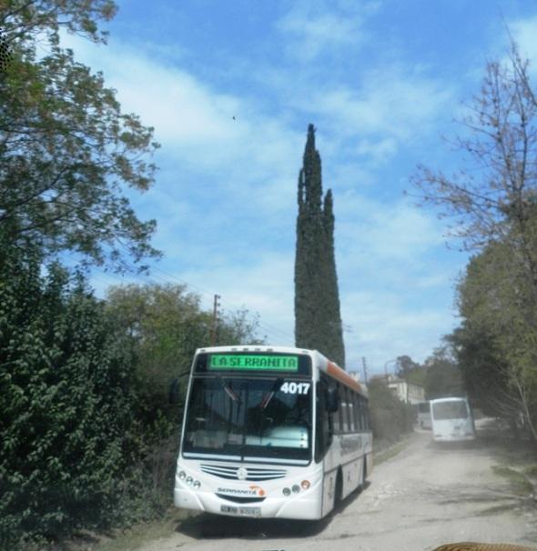 Ruta de ómnibus