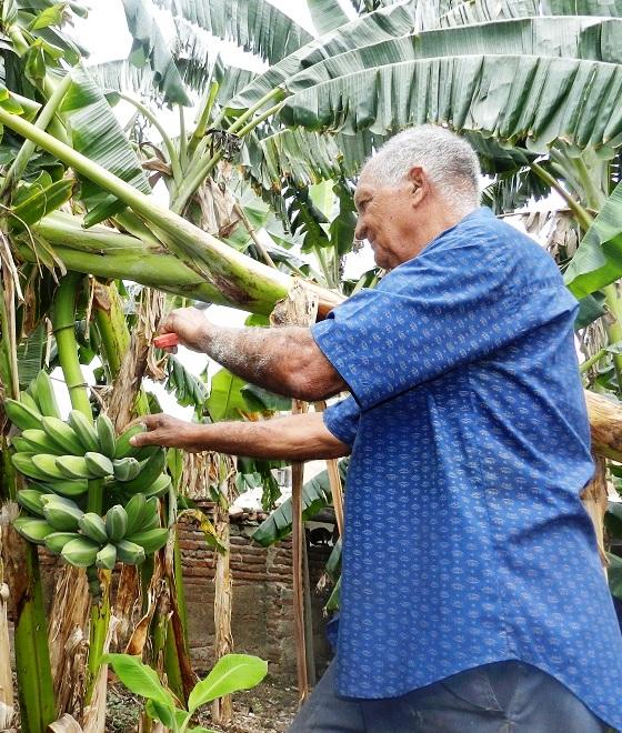 Carlos Manuel posee una parcela en la calle Republica en  el centro histórico de Camagüey