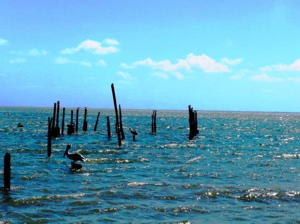 El sitio sobresale además, por un paisaje marino de excepcional belleza