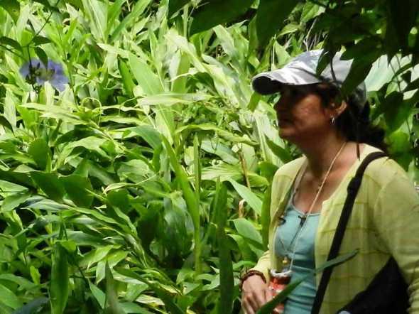 Bioencuadre, estimula la formación de profesionales con una dimensión ambiental