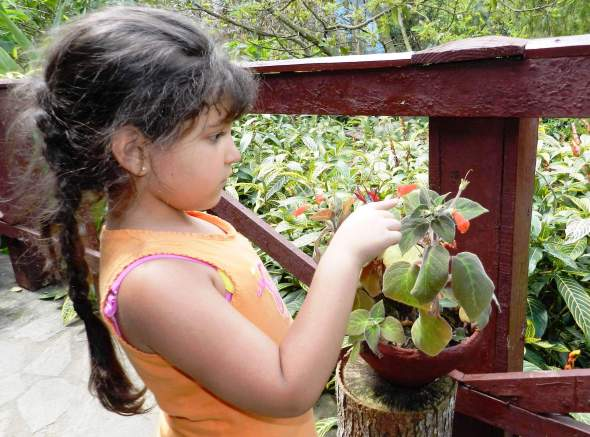 Los niños también saben apreciar la naturaleza
