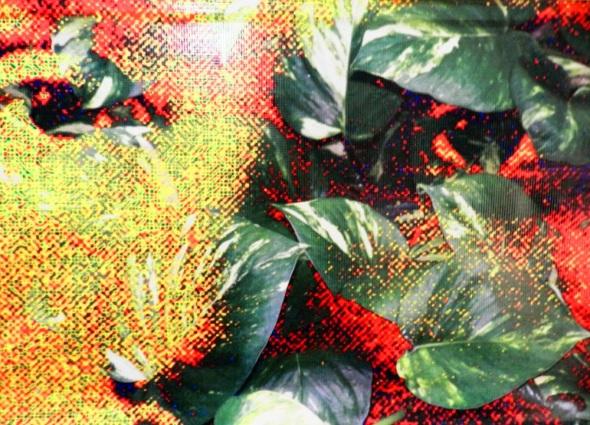 Sin título. De la serie Sol y loma. Dimensiones 75x 130 cm. Técnica Arte digital. Autor Nazario Salazar M