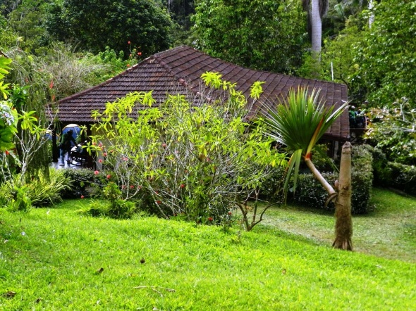 Parque Natural Codina, a unos 8 kilómetros de Topes Collantes