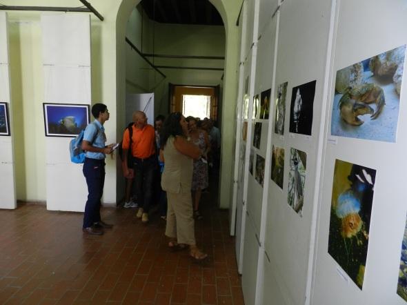 Salón de Fotografía de Naturaleza