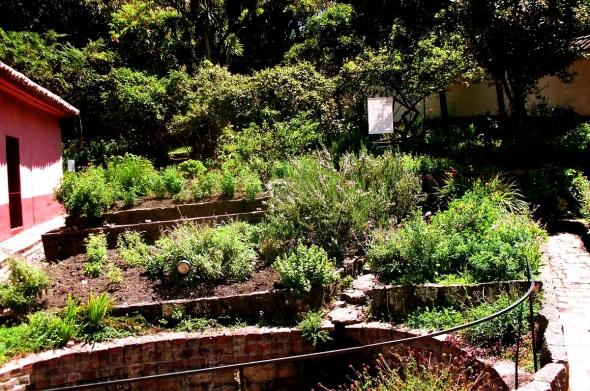 Uno de los Jardines de la Casa Museo