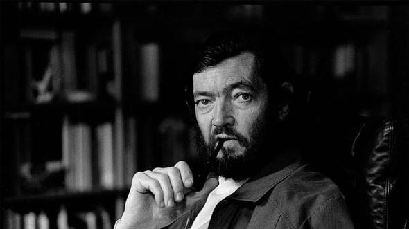 Julio Florencio Cortázar fue un escritor y traductor argentino
